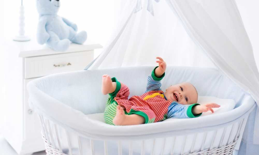 Green Frog Lily Pod Baby Bassinet Review