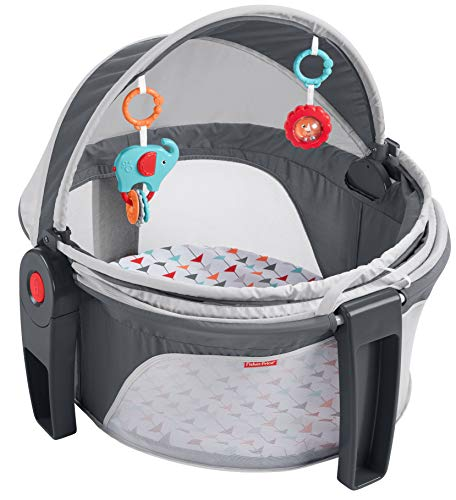 Fisher-Price On-the-Go Baby Dome, Multi